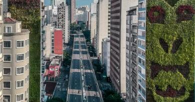 Parque Minhocão: uma grave inconsequência com São Paulo