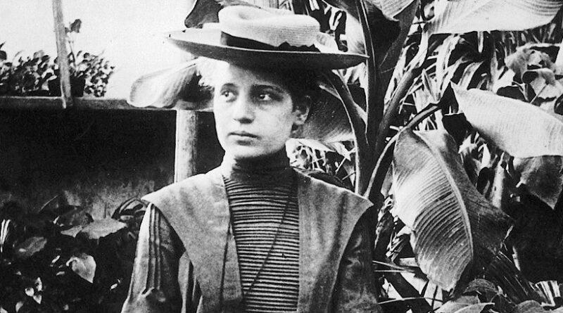Por que Lise Meitner não ganhou o Nobel?