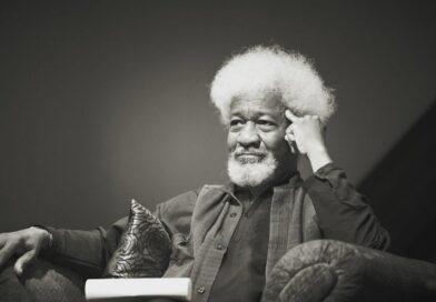Sobre teias assim: estética literária na literatura negro-africana
