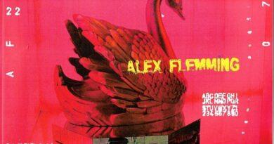 As alturas de Alex Flemming
